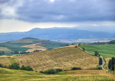 Tuscany Fields Landscape by Neil Allen Italy