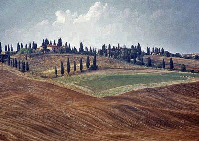 Tuscany Landscape by Eva Fernandez