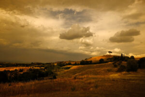 Shot during one of our landscape outings with Robin Davis Cortona Center of Photography